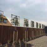 Projecten gerealiseerd door Koen Dijkshoorn Hovenier voor Grondig Werk.